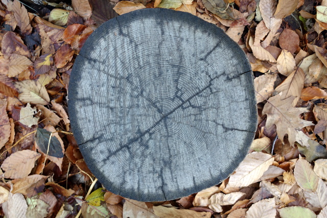 Naturally Concentric